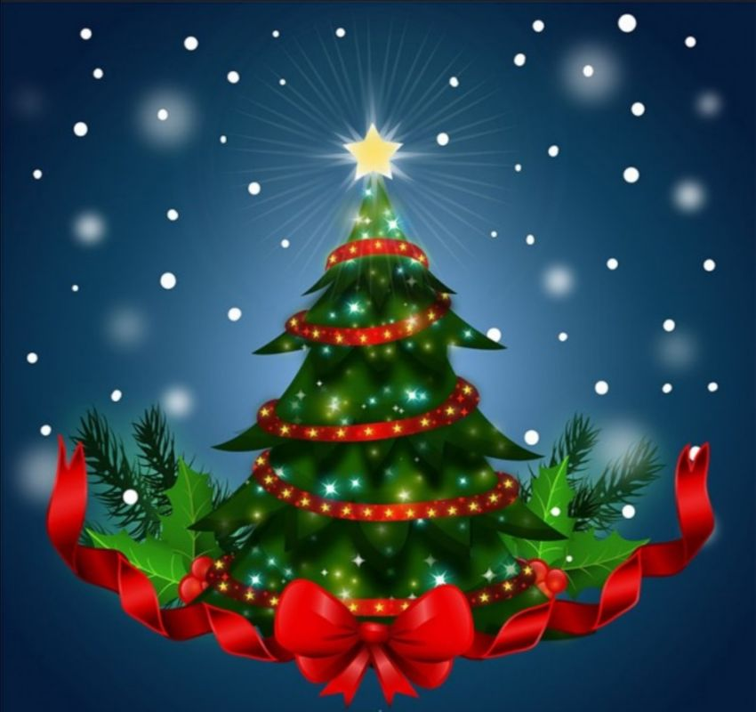 Fiestas de Navidad y Año Nuevo en toque de queda y pico y cédula en Ibagué. 1