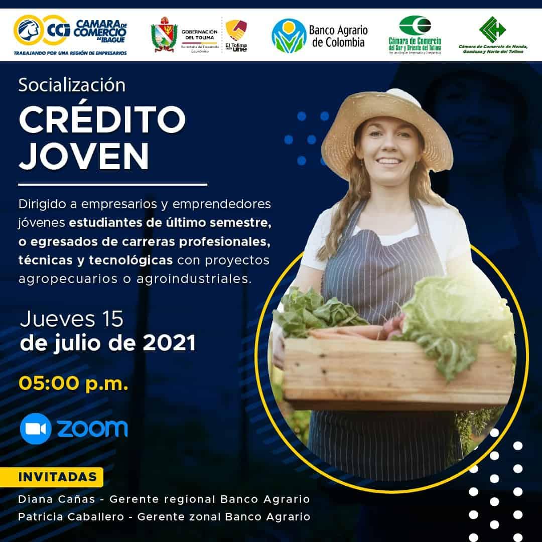 Línea de crédito para jóvenes empresarios será entre socializada por el Gobierno Departamental 1
