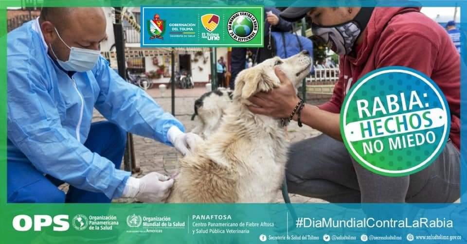 *Día mundial de la lucha contra la rabia animal* 2