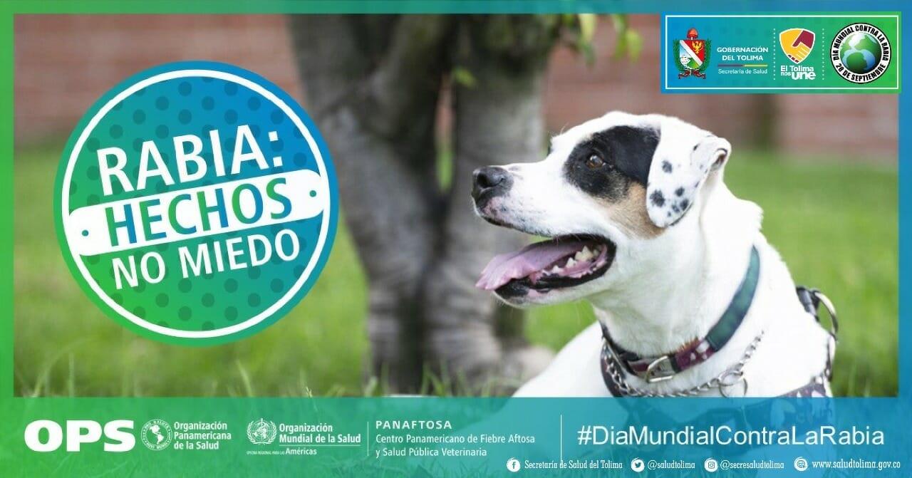 *Día mundial de la lucha contra la rabia animal* 1